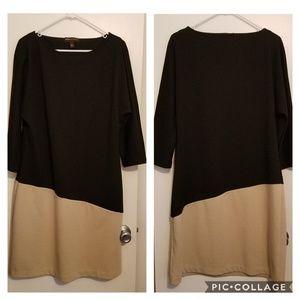 Black and Beige Colorblock Dolman Sleeve Dress